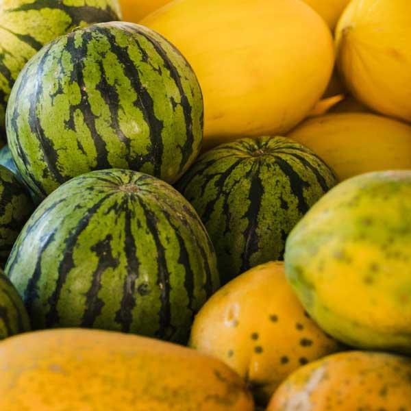 Fruites. Sucs. Taller de cuina hivern